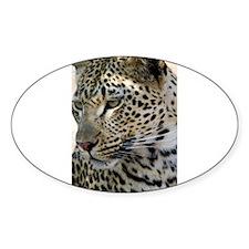 Leopard Profile Decal