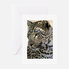 Leopard Profile Greeting Cards (Pk of 20)