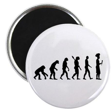 """Evolution cook chef 2.25"""" Magnet (100 pack)"""