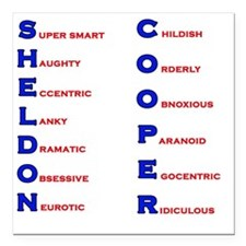 "Sheldon Cooper Adjectives Square Car Magnet 3"" x 3"
