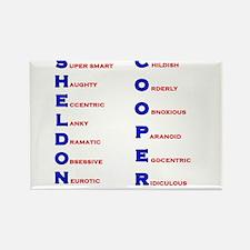 Sheldon Cooper Adjectives Rectangle Magnet
