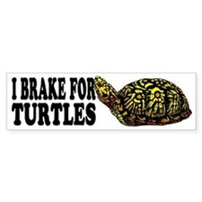 Turtle Bumper Bumper Sticker