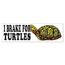 Turtle Bumper Bumper Stickers