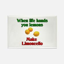 When Life Hands You Lemons Rectangle Magnet