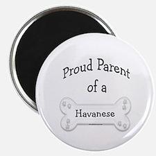 Proud Parent of a Havanese Magnet
