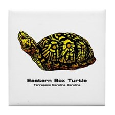 Eastern Box Turtle Tile