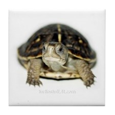 Box Turtle Tile