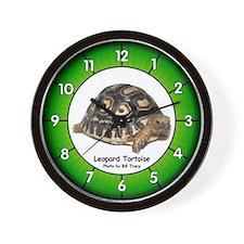 Baby Leopard Tortoise Wall Clock