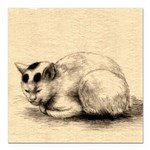 Domestic Cat Japanese Ink Drawing Square Car Magne