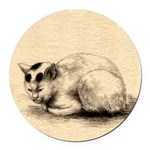 Domestic Cat Japanese Ink Drawing Round Car Magnet