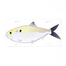 Menhaden Bunker fish Aluminum License Plate