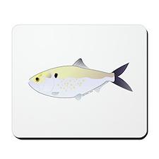 Menhaden Bunker fish Mousepad
