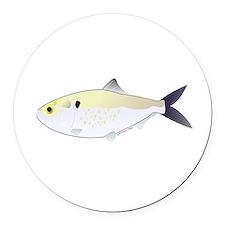 Menhaden Bunker fish Round Car Magnet