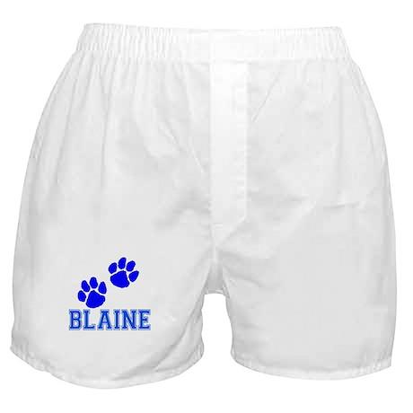 HS3.jpg Boxer Shorts