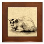 Domestic Cat Japanese Ink Drawing Framed Tile