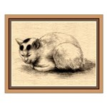 Domestic Cat Japanese Ink Drawing Small Poster