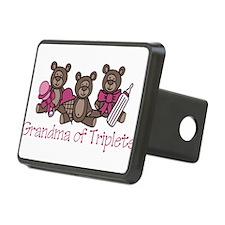 Grandma Of Triplets Hitch Cover