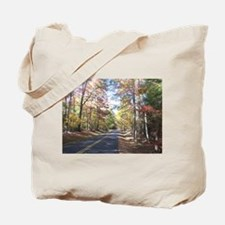 Autumn Country Road Tote Bag