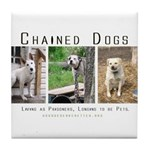 3 Chained Dogs: Longing to be Tile Coaster