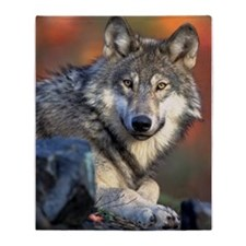 Awesome Gray Wolf Throw Blanket