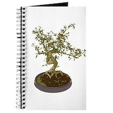 Bonsai Graphic Journal