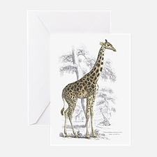 Giraffe Greeting Cards (Pk of 10)