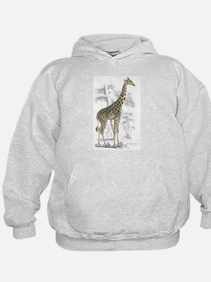 Giraffe (Front) Hoodie