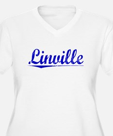 Linville, Blue, Aged T-Shirt