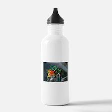Rat a tooey Water Bottle