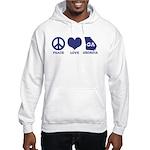 Peace Love Georgia Hooded Sweatshirt