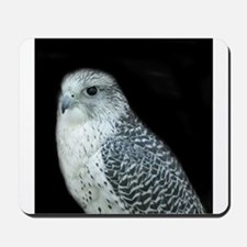 GyrFalcon out on the town Mousepad