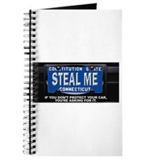 Steal My Conneticut Car Journal