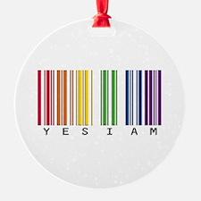 gay pride barcode Ornament