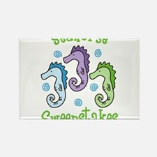 Seahorse Sweepstakes Rectangle Magnet