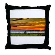 Chicago on the Horizon Throw Pillow