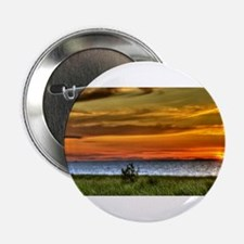 "Chicago on the Horizon 2.25"" Button"