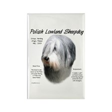 Polish Lowland Sheepdog Rectangle Magnet