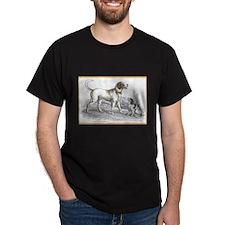 Saint Bernard Dog (Front) Black T-Shirt