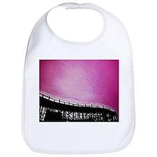 Roller Coaster in Pink Bib