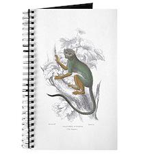 Siamiri Monkey Journal