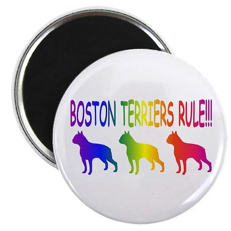 Boston Terriers Magnet
