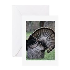 Shake Your Tail Feathers Greeting Card