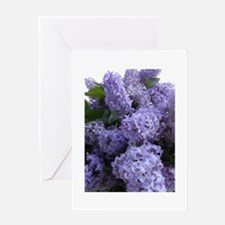 Lilac Lilac Greeting Card