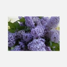 Lilac Lilac Rectangle Magnet