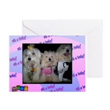 Puppy congratul Greeting Cards (Pk of 10