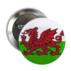 Welsh Flag 2.25