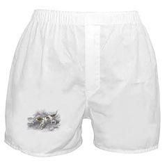 Setter Dog Boxer Shorts