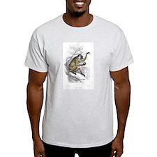 Proboscis Monkey (Front) Ash Grey T-Shirt