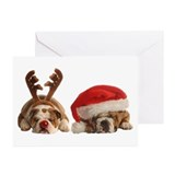 Bulldog lover Greeting Cards (10 Pack)