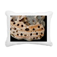Power shell Rectangular Canvas Pillow
